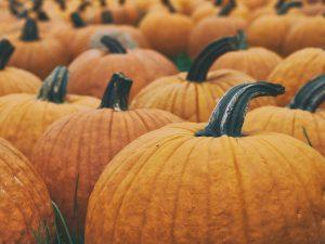 Prestatyn Halloween Spookfest